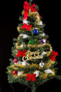 クリスマスツリーイルミネーション撮影