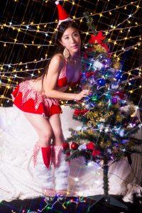 作品撮り-メリークリスマス