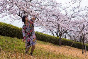 桜スナップ