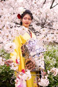 桜スナップ - 花魁